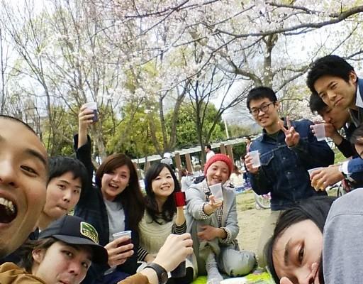 お花見@妙法寺川公園